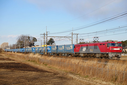 DSCF5215.jpg
