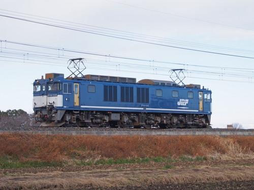 P1174782.jpg