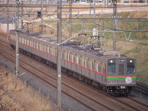 P3233318.jpg